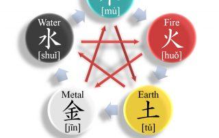 5 האלמנטים