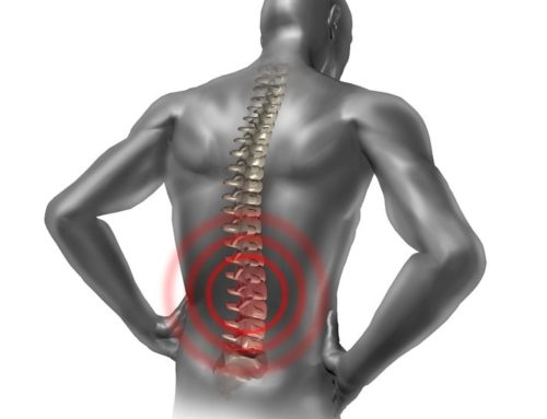 כאבי גב – דיקור בגישה מרידיאנית, ריכוז הרצאות